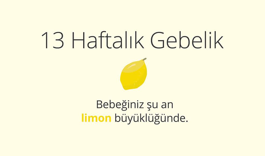 13. haftada bebek limon büyüklüğünde