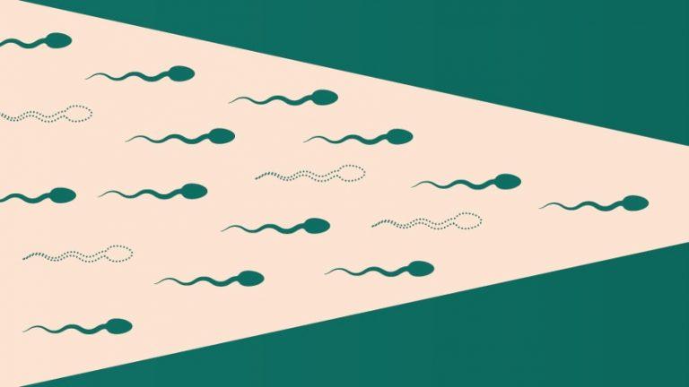 Sağlıklı Sperm için İpuçları
