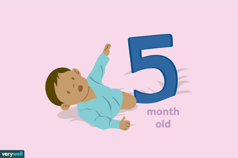 5 Aylık Bebek: Gelişimi, Beslenmesi, Uyku Düzeni