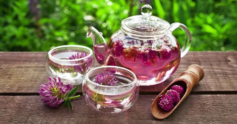 cam bitki çayı demliği ve bardakları